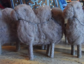 Wooly Camel